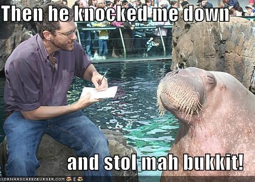 Then he knocked me down  and stol mah bukkit!