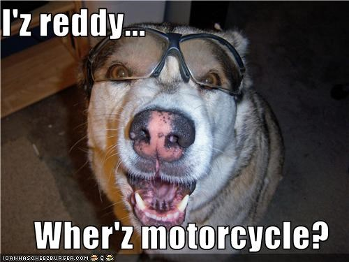 I'z reddy...  Wher'z motorcycle?