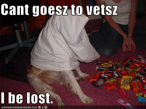 Cant goesz to vetsz  I be lost.