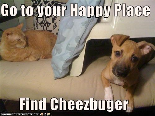 Go to your Happy Place  Find Cheezbuger