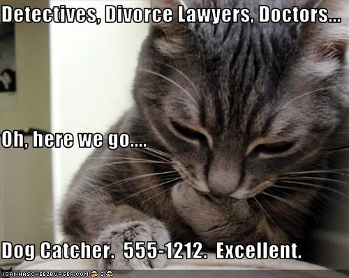 Detectives, Divorce Lawyers, Doctors... Oh, here we go.... Dog Catcher.  555-1212.  Excellent.