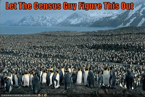 Let The Census Guy Figure This Out