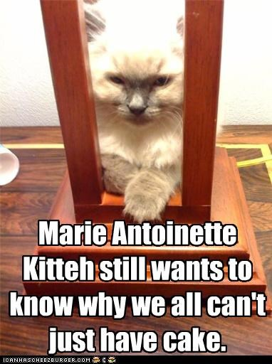 cake,cant,caption,captioned,cat,column,guillotine,have,marie antoinette,question,sitting,wondering