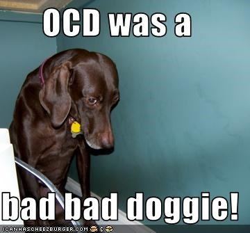 OCD was a  bad bad doggie!