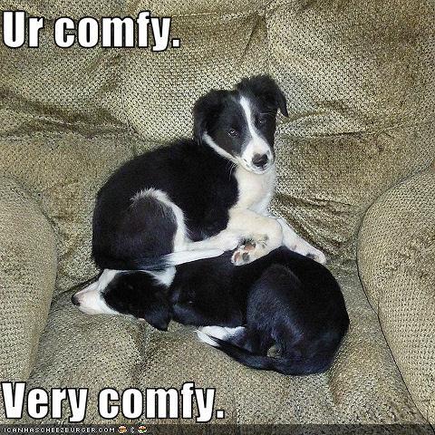 Ur comfy.  Very comfy.