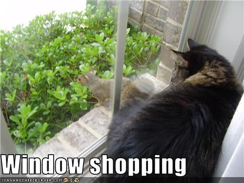 Window shopping