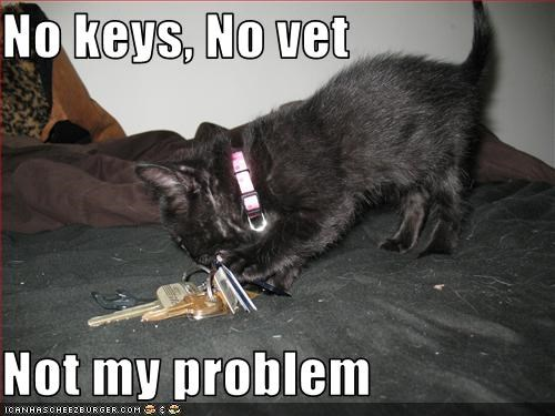 No keys, No vet  Not my problem