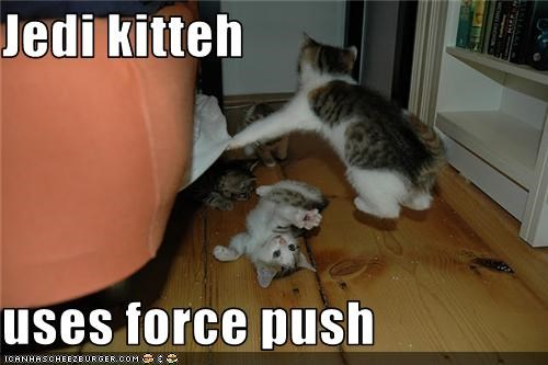 Jedi kitteh  uses force push