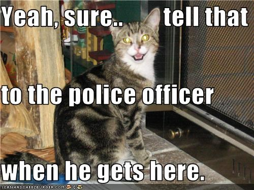 Yeah, sure..        tell that to the police officer  when he gets here.