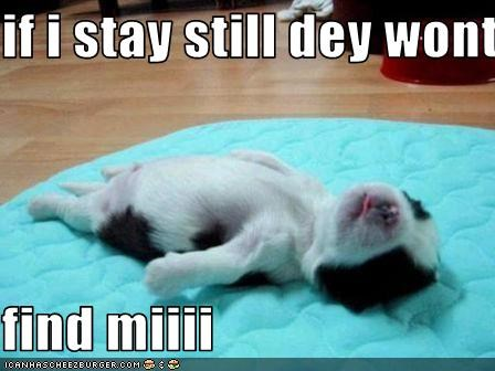 if i stay still dey wont  find miiii