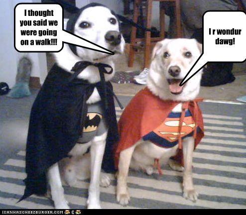 I r wondur dawg!