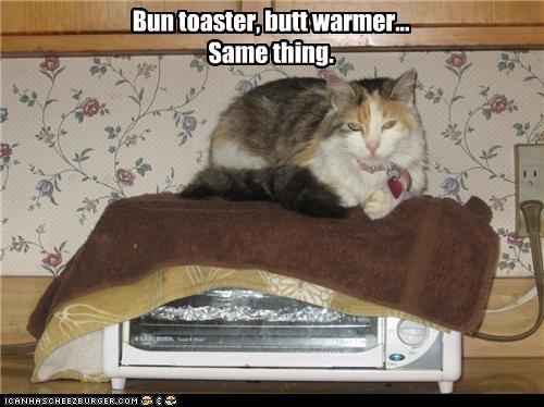 Bun toaster, butt warmer... Same thing.