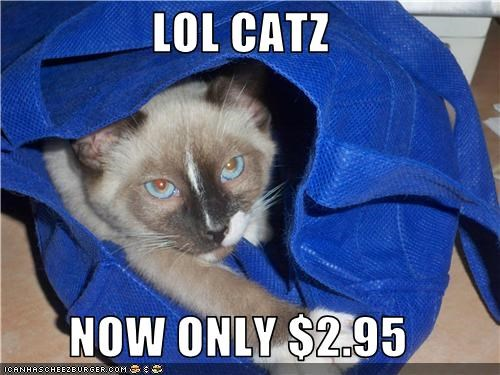 LOL CATZ  NOW ONLY $2.95