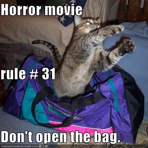 31,advice,bag,caption,captioned,cat,dont,horror,Movie,open,rule