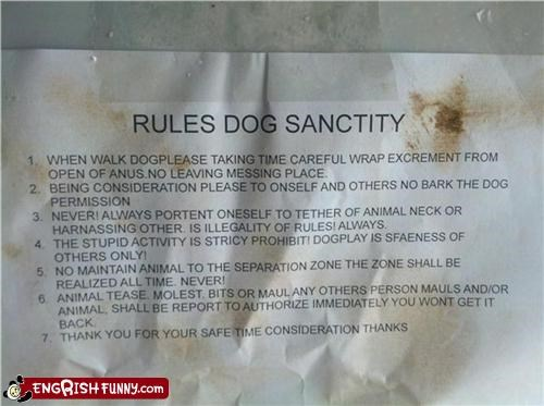 Ah, the Sanctity of DOG