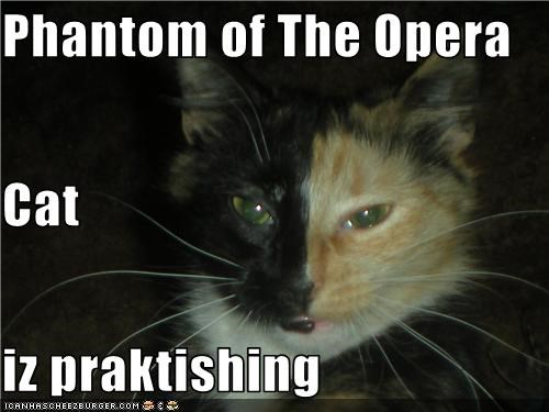 Phantom of The Opera Cat iz praktishing