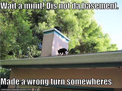 Wait a minit! Dis not da basement.   Made a wrong turn somewheres.