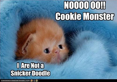 NOOOO OO!!  Cookie Monster