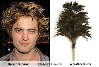 Robert Pattinson Totally Looks Like A Feather Duster