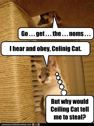 Ceiling Cat works in mysterious ways.