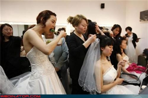 bride,bride assembly line,Crazy Brides,fashion is my passion,funny bride picture,funny brides picture,funny wedding photos,Multiple Brides,technical difficulties,wedding party