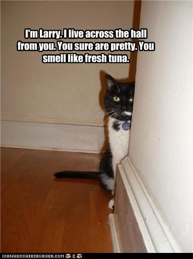 I'm Larry. I live across the hall from you. You sure are pretty. You smell like fresh tuna.
