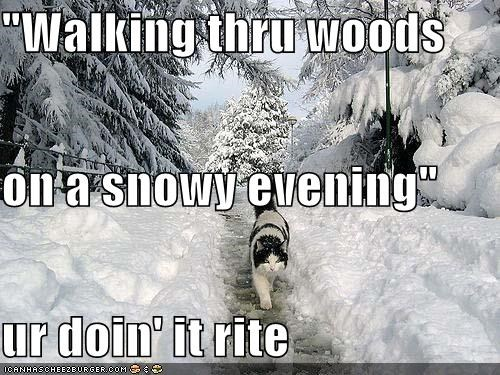 """Walking thru woods on a snowy evening"" ur doin' it rite"