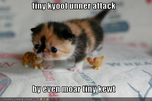 tiny kyoot unner attack   by even moar tiny kewt