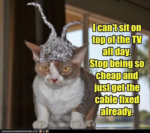 I can't sit on top of the TV all day. Stop being so cheap and just get the cable fixed already.