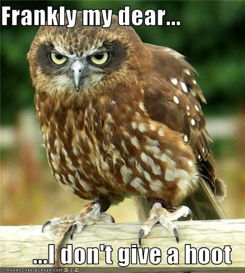 Frankly my dear...  ...I don't give a hoot