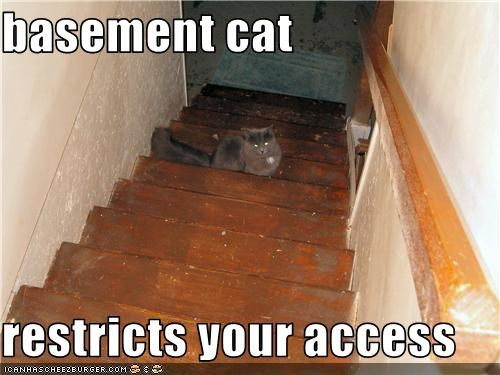basement cat  restricts your access