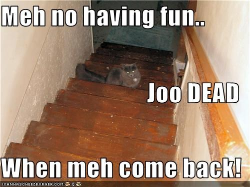 Meh no having fun.. Joo DEAD When meh come back!