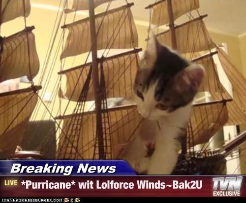 Breaking News - *Purricane* wit Lolforce Winds~Bak2U