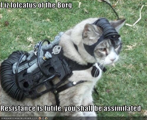 I iz lolcatus of the Borg  Resistance is futile, you shall be assimilated