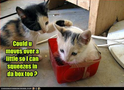 Could u moves over a little so I can squeezes in da box too ?