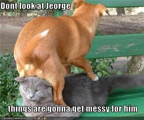Dont look at Jeorge  things are gonna get messy for him