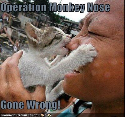 Operation Monkey Nose  Gone Wrong!