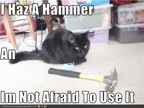 I Haz A Hammer An Im Not Afraid To Use It