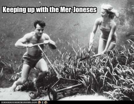 Keeping up with the Mer-Joneses
