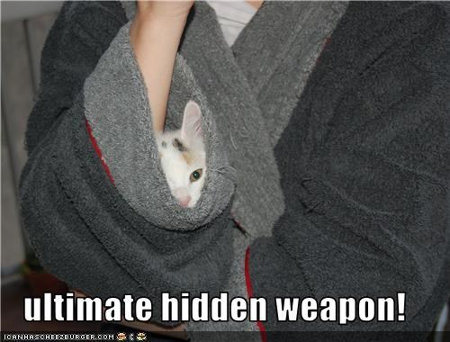 ultimate hidden weapon!