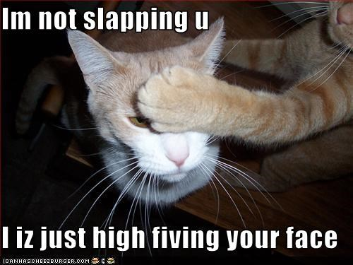 Im not slapping u  I iz just high fiving your face