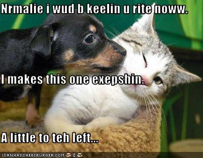 Nrmalie i wud b keelin u rite noww. I makes this one exepshin. A little to teh left...
