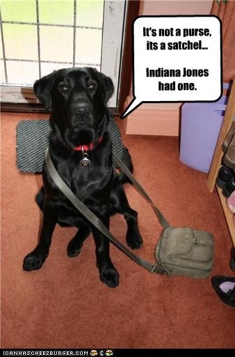 It's not a purse, its a satchel...  Indiana Jones had one.