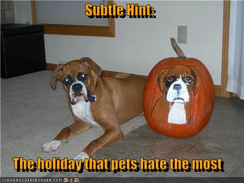 Subtle Hint:  The holiday that pets hate the most