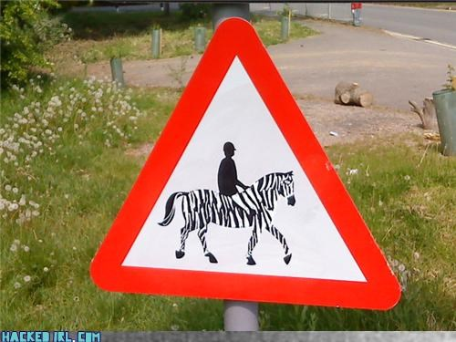 Zebra Crossing?