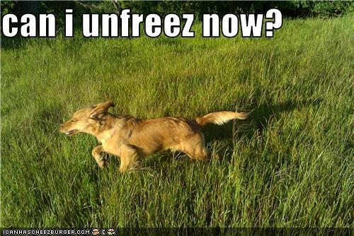 can i unfreez now?