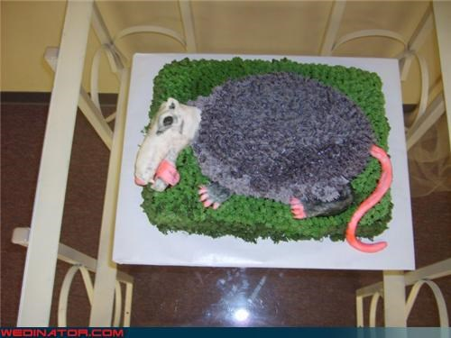 armadillo-grooms-cake,crazy groom,Dreamcake,ew,eww,funny wedding photos,groom,grooms-cake,gross-grooms-cake,possum-grooms-cake,roadkill-grooms-cake,surprise,weird-grooms-cake,wtf