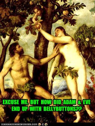 EXCUSE  ME,  BUT  HOW  DID  ADAM  &  EVE  END  UP  WITH  BELLYBUTTONS??