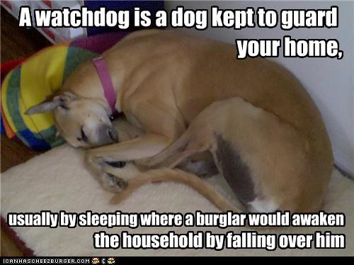 A watchdog is a dog kept to guard