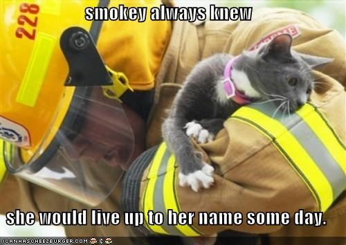 smokey always knew   she would live up to her name some day.